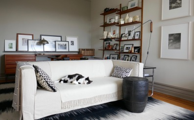 Always match your furniture to your pets (seriously, it hides the hair!)