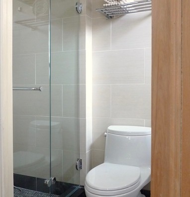 The tiny shower, smack up against the toilet, posed a challenge to find a workable enclosure beyond a curtain.